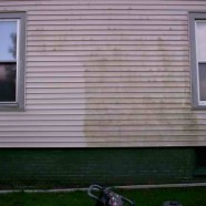 Pressure Washing & Mold Removal